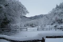il maneggio d'inverno